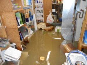water damage restoration bridgeport, water damage bridgeport, water damage repair bridgeport